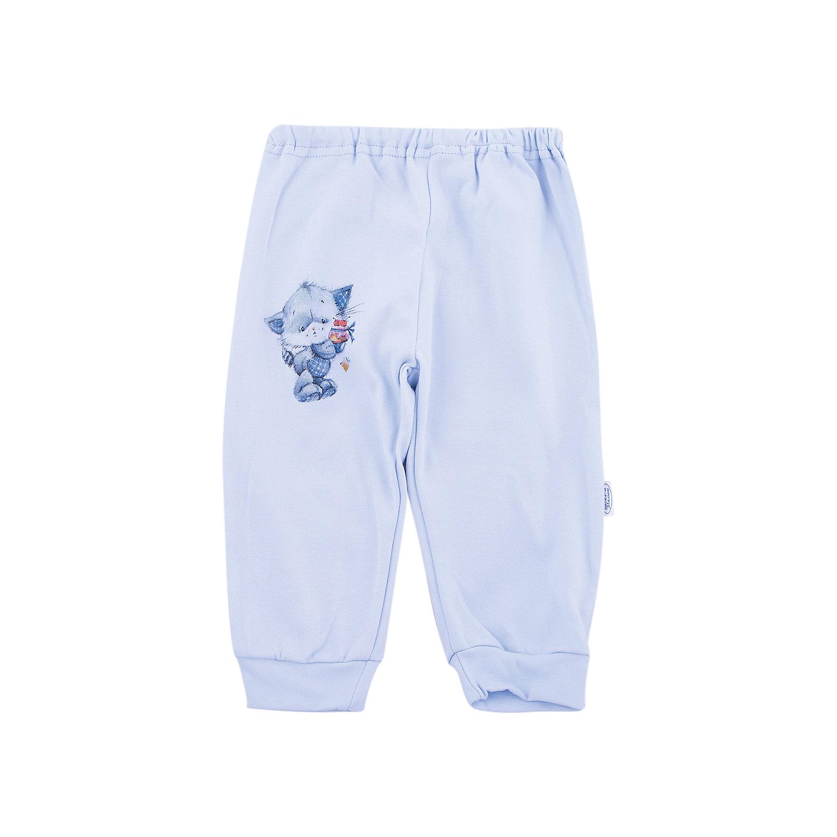 Штанишки Веселый малыш для мальчикаПолзунки и штанишки<br>Штанишки Веселый малыш для мальчика<br>Штанишки с манжетами Котик  из качественного натурального полотна (интерлок пенье).<br>Состав:<br>100%хлопок<br><br>Ширина мм: 157<br>Глубина мм: 13<br>Высота мм: 119<br>Вес г: 200<br>Цвет: голубой<br>Возраст от месяцев: 12<br>Возраст до месяцев: 18<br>Пол: Мужской<br>Возраст: Детский<br>Размер: 86,68,74,80<br>SKU: 7053294