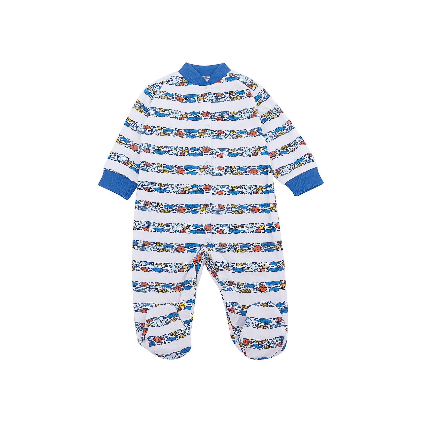 Комбинезон Веселый малыш для мальчикаКомбинезоны<br>Комбинезон Веселый малыш для мальчика<br>Комбинезон Морская жизнь из качественного натурального полотна (интерлок пенье).<br>Состав:<br>100%хлопок<br><br>Ширина мм: 157<br>Глубина мм: 13<br>Высота мм: 119<br>Вес г: 200<br>Цвет: голубой<br>Возраст от месяцев: 12<br>Возраст до месяцев: 15<br>Пол: Мужской<br>Возраст: Детский<br>Размер: 80,68,74<br>SKU: 7053361