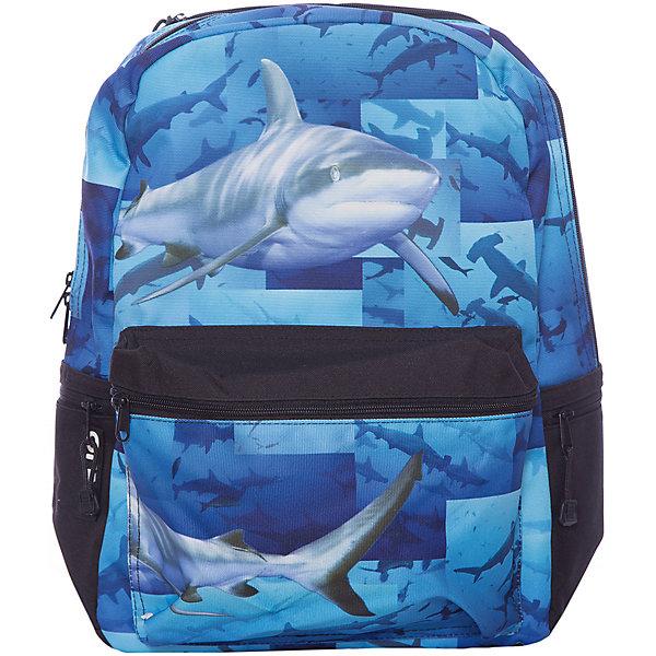 Рюкзак Sharks, цвет (черный/мульти)Рюкзаки<br>Характеристики товара:<br><br>• цвет: черный/мульти;<br>• возраст: от 10 лет;<br>• вес: 0,5 кг;<br>• размер: 43х30х16 см;<br>• принт светится при попадании на него ультрафиолетовых лучей;<br>• вместительный внутренний отсек;<br>• накладной карман на молнии;<br>• уплотненная спинка, дно и ремни;<br>• прочная текстильная ручка;<br>• подвесная система регулировки лямок;<br>• материал: полиэстер;<br>• страна бренда: США;<br>• страна изготовитель: Китай.<br><br>Синий рюкзак «Sharks» мгновенно выделяется реалистичным принтом – плывущими акулами устрашающего вида.<br><br>В рюкзак от Моджо Пакс поместится все необходимое для школы: в большом основном отсеке расположено отделение для планшета, а в передний и боковые карманы удобно складывать мелкие вещи и аксессуары.<br><br>Рюкзак «Sharks» отделан полиуретановым покрытием, которое придает ему дополнительную прочность и устойчивость к внешним воздействиям.<br><br>Усиленная спинка благоприятно воздействует на позвоночник подростка. Широкие плотные ремни стабилизируют нагрузку.<br><br>Рюкзак Mojo Pax «Sharks» с наушниками можно купить в нашем интернет-магазине.<br>Ширина мм: 430; Глубина мм: 300; Высота мм: 160; Вес г: 500; Возраст от месяцев: 120; Возраст до месяцев: 720; Пол: Унисекс; Возраст: Детский; SKU: 7054138;