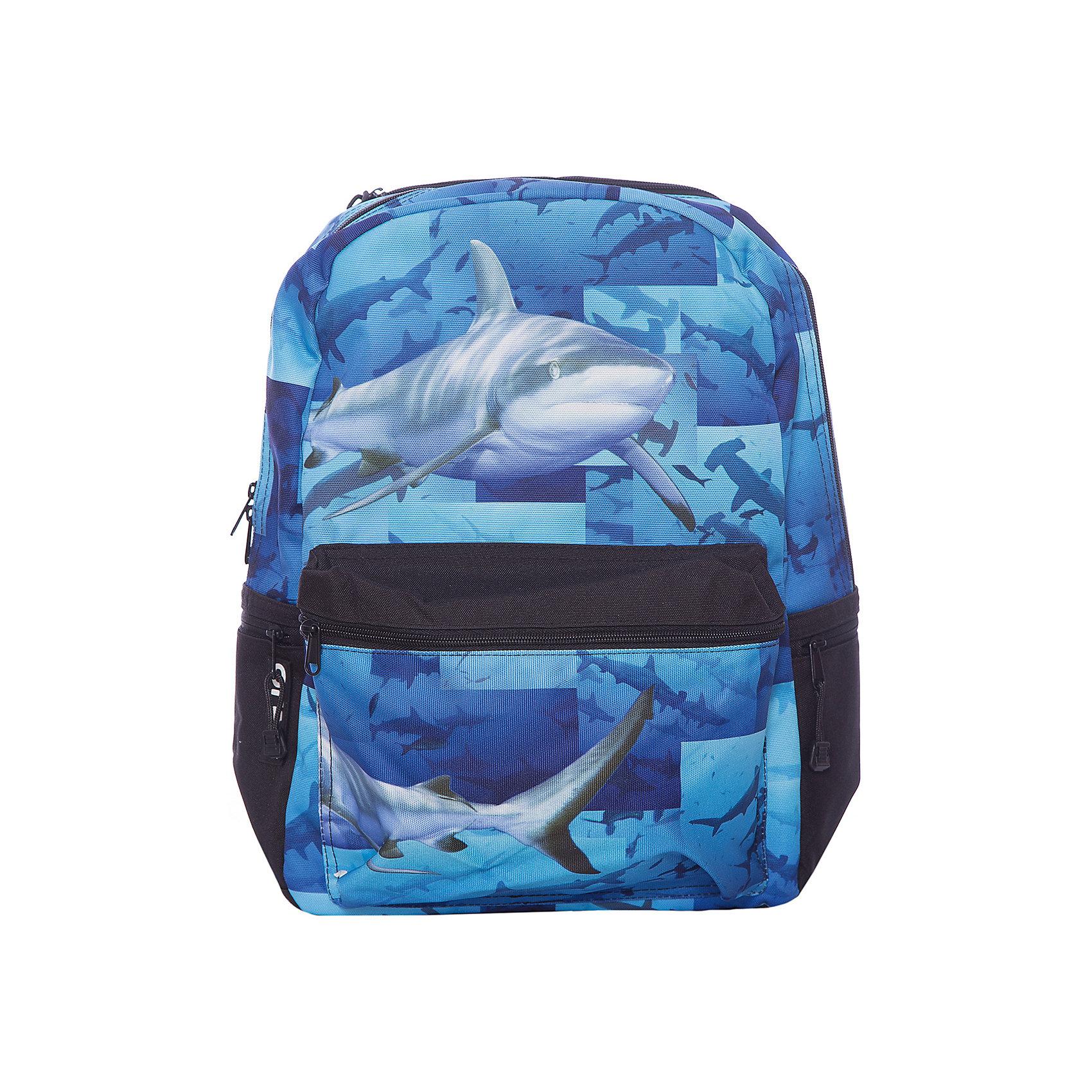 Рюкзак Sharks, цвет (черный/мульти)Рюкзаки<br>Характеристики товара:<br><br>• цвет: черный/мульти;<br>• возраст: от 10 лет;<br>• вес: 0,5 кг;<br>• размер: 43х30х16 см;<br>• принт светится при попадании на него ультрафиолетовых лучей;<br>• вместительный внутренний отсек;<br>• накладной карман на молнии;<br>• уплотненная спинка, дно и ремни;<br>• прочная текстильная ручка;<br>• подвесная система регулировки лямок;<br>• материал: полиэстер;<br>• страна бренда: США;<br>• страна изготовитель: Китай.<br><br>Синий рюкзак «Sharks» мгновенно выделяется реалистичным принтом – плывущими акулами устрашающего вида.<br><br>В рюкзак от Моджо Пакс поместится все необходимое для школы: в большом основном отсеке расположено отделение для планшета, а в передний и боковые карманы удобно складывать мелкие вещи и аксессуары.<br><br>Рюкзак «Sharks» отделан полиуретановым покрытием, которое придает ему дополнительную прочность и устойчивость к внешним воздействиям.<br><br>Усиленная спинка благоприятно воздействует на позвоночник подростка. Широкие плотные ремни стабилизируют нагрузку.<br><br>Рюкзак Mojo Pax «Sharks» с наушниками можно купить в нашем интернет-магазине.<br><br>Ширина мм: 430<br>Глубина мм: 300<br>Высота мм: 160<br>Вес г: 500<br>Возраст от месяцев: 120<br>Возраст до месяцев: 720<br>Пол: Унисекс<br>Возраст: Детский<br>SKU: 7054138