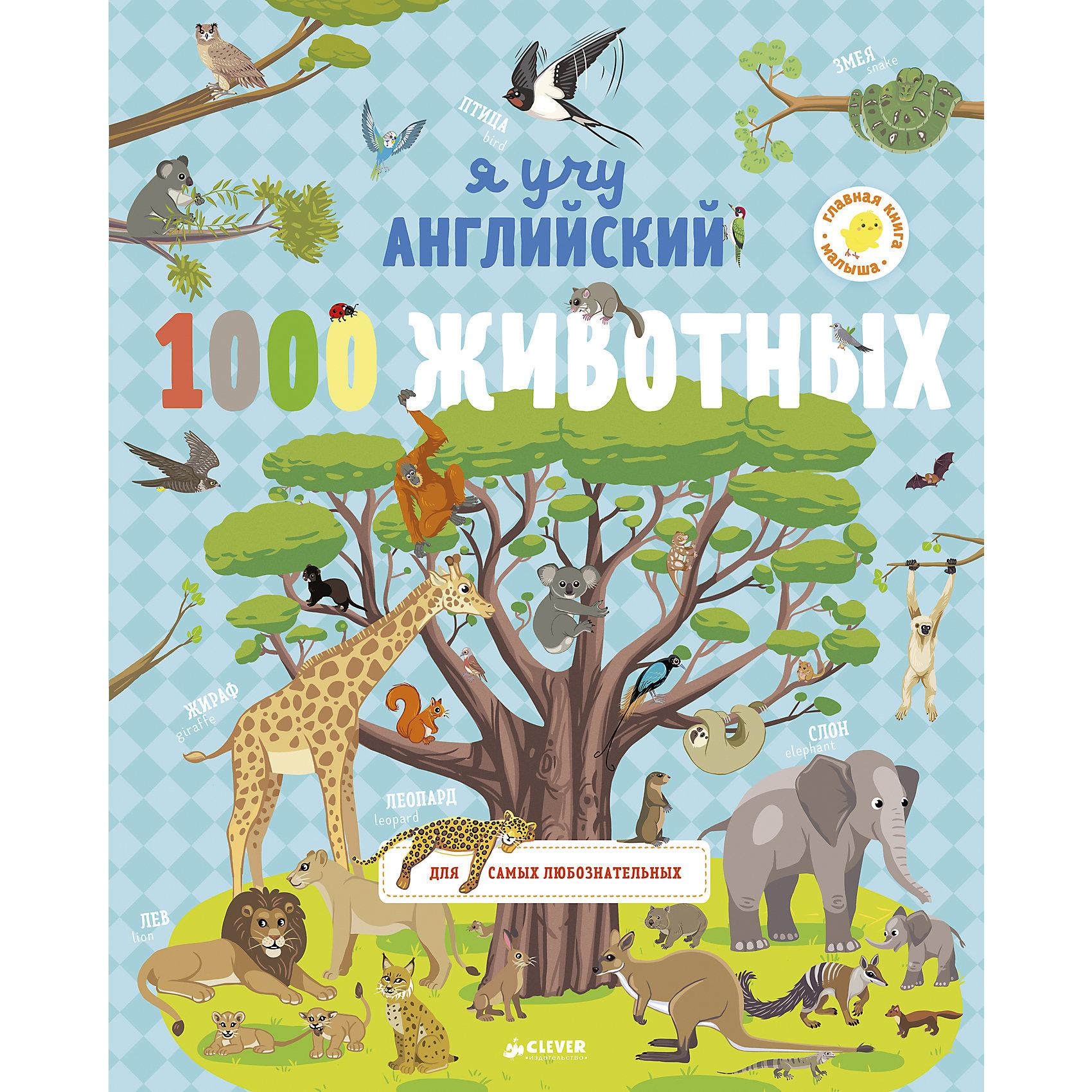 Я учу английский 1000 животных CleverИностранный язык<br>Дома, на улице, в небе, под водой и под землей нас окружает удивительный мир животных. Кто живет в лесу, в пустыне, в тропиках, а кто в глубинах океана и морей? Кто бодрствует всю ночь, а кто просыпается вместе с солнцем? Как обустраивают дома, кто чем питается, как выглядит потомство? С этой книгой вы узнаете много нового и интересного, а еще выучите, как все эти животные называются на английском языке! Рассматривайте картинки и запоминайте разных животных - от уже знакомых до совершенно экзотических!<br><br>Ширина мм: 310<br>Глубина мм: 245<br>Высота мм: 5<br>Вес г: 735<br>Возраст от месяцев: 48<br>Возраст до месяцев: 72<br>Пол: Унисекс<br>Возраст: Детский<br>SKU: 7065170