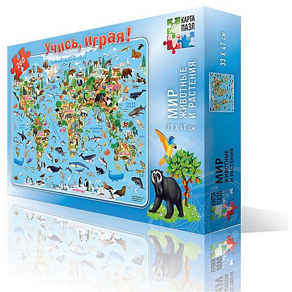 Карта-пазл Мир-животные и растения Издательство ГеоДомПазлы классические<br>Характеристики:<br><br>• количество деталей: 260 шт.;<br>• размер упаковки: 29,2х19,0х3,6 см.;<br>• размер готовой картинки: 33,0х47,0 см.;<br>• состав: картон;<br>• вес: 500 г.;<br>• для детей в возрасте: от 6 лет;<br>• страна производитель: Россия.<br><br>Карта пазл «Мир-животные и растения» от издательства ГеоДом станет прекрасным дополнением для коллекции пазлов ребёнка.<br><br>На ярком, красочном пазле изображён весь мир животных и растений нашей планеты. Собирая пазл ребёнок изучит богатый мир разных материков и островов, а также обитателей морей и океанов.<br><br>Мозаика состоит из красочных разнообразных частиц, которые собираются в одно целое. Получается прекрасная картина, которая разнообразит интерьер детской комнаты.<br><br>Собирать пазлы веселее всей семьёй или в компании друзей. Играя в пазлы дети становятся более усидчивыми, терпеливыми, внимательными.<br><br>Карту пазл «Мир-животные и растения» можно приобрести в нашем интернет-магазине.<br>Ширина мм: 290; Глубина мм: 190; Высота мм: 40; Вес г: 228; Возраст от месяцев: 72; Возраст до месяцев: 2147483647; Пол: Унисекс; Возраст: Детский; SKU: 7077940;