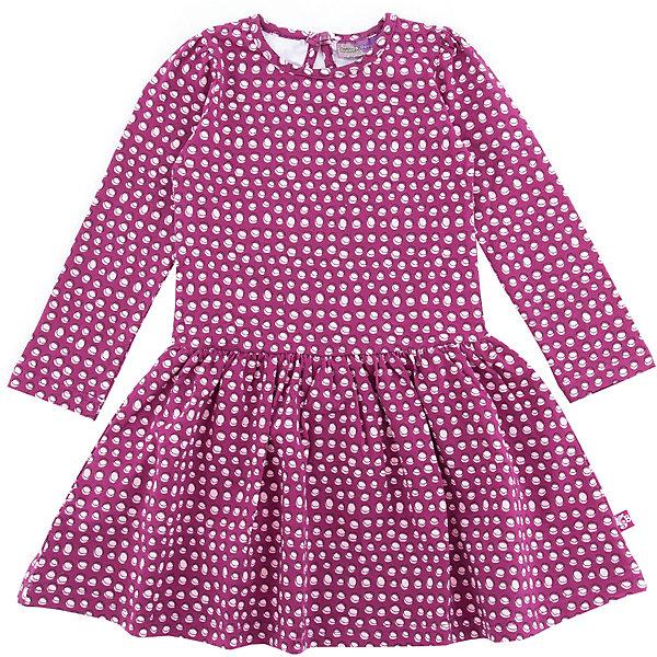 Платье Sweet Berry для девочкиПлатья и сарафаны<br>Характеристики товара:<br><br>• цвет: розовый<br>• состав: 95% хлопок, 5% лайкра<br>• сезон: демисезон<br>• длинные рукава<br>• застежка: пуговица <br>• страна бренда: Россия<br>• страна производства: Китай<br><br>Трикотажное платье Sweet Berry для девочки декорировано принтом. В таком детском платье ребенок будет выглядеть аккуратно и чувствовать себя комфортно. Симпатичное платье для девочки сделано из мягкого дышащего материала.<br><br>Платье Sweet Berry (Свит Берри) для девочки можно купить в нашем интернет-магазине.<br>Ширина мм: 236; Глубина мм: 16; Высота мм: 184; Вес г: 177; Цвет: лиловый; Возраст от месяцев: 24; Возраст до месяцев: 36; Пол: Женский; Возраст: Детский; Размер: 98,128,122,116,110,104; SKU: 7096858;