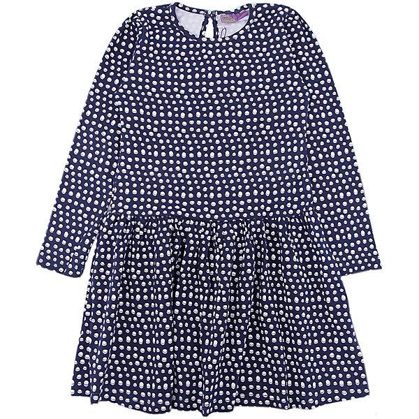Платье Sweet Berry для девочкиПлатья и сарафаны<br>Характеристики товара:<br><br>• цвет: синий<br>• состав: 95% хлопок, 5% лайкра<br>• сезон: демисезон<br>• длинные рукава<br>• застежка: пуговица <br>• страна бренда: Россия<br>• страна производства: Китай<br><br>В этом детском платье ребенок будет выглядеть аккуратно и чувствовать себя комфортно. Трикотажное платье Sweet Berry для девочки удобно надевается благодаря пуговице сзади. Симпатичное платье для девочки сделано из мягкого дышащего материала.<br><br>Платье Sweet Berry (Свит Берри) для девочки можно купить в нашем интернет-магазине.<br><br>Ширина мм: 236<br>Глубина мм: 16<br>Высота мм: 184<br>Вес г: 177<br>Цвет: синий<br>Возраст от месяцев: 24<br>Возраст до месяцев: 36<br>Пол: Женский<br>Возраст: Детский<br>Размер: 116,110,104,98,128,122<br>SKU: 7096865