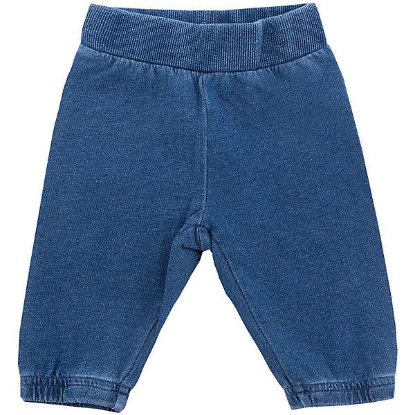 Брюки PlayToday для девочкиДжинсы и брючки<br>Характеристики товара:<br><br>• цвет: синий<br>• состав ткани: 100% хлопок<br>• сезон: демисезон<br>• пояс: резинка<br>• страна бренда: Германия<br>• страна изготовитель: Китай<br><br>Детская одежда и обувь от PlayToday - это стильные вещи по доступным ценам. Брюки для девочки - на широкой удобной резинке. Детские брюки снабжены мягкими манжетами. Брюки для детей сделаны из натурального хлопка. <br><br>Брюки PlayToday (ПлэйТудэй) для девочки можно купить в нашем интернет-магазине.<br>Ширина мм: 215; Глубина мм: 88; Высота мм: 191; Вес г: 336; Цвет: синий; Возраст от месяцев: 0; Возраст до месяцев: 3; Пол: Женский; Возраст: Детский; Размер: 56,74,68,62; SKU: 7107277;