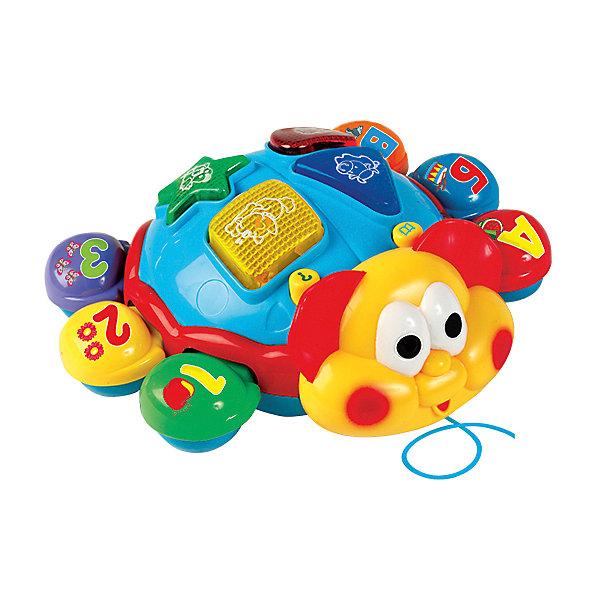 Интерактивная игрушка Умка Говорящий жук (свет, звук)Интерактивные игрушки для малышей<br>Характеристики товара:<br><br>• возраст: от 2 лет;   <br>• для мальчиков и девочек;<br>• тип батареек: на батарейках;<br>• из чего сделана игрушка (состав): пластик;<br>• упаковка: картонная коробка блистерного типа;<br>• особенности: на русском языке, 7 обучающих программ;<br>• размер: 26x9x25 см.;<br>• страна обладатель бренда: Россия.<br><br>Игрушка «Говорящий жук» обязательно понравится каждому малышу. Она обладает ярким и стильным дизайном и снабжена световыми и звуковыми эффектами, которые привлекут его внимание. Благодаря 7 обучающим программам игрушка позволит развить у вашего ребенка основные знания и навыки, которые пригодятся ему в будущем.                                                                               <br><br>Игрушку «Говорящий жук» можно купить в нашем интернет-магазине.<br><br>Ширина мм: 260<br>Глубина мм: 90<br>Высота мм: 250<br>Вес г: 660<br>Возраст от месяцев: 72<br>Возраст до месяцев: 60<br>Пол: Унисекс<br>Возраст: Детский<br>SKU: 7117605