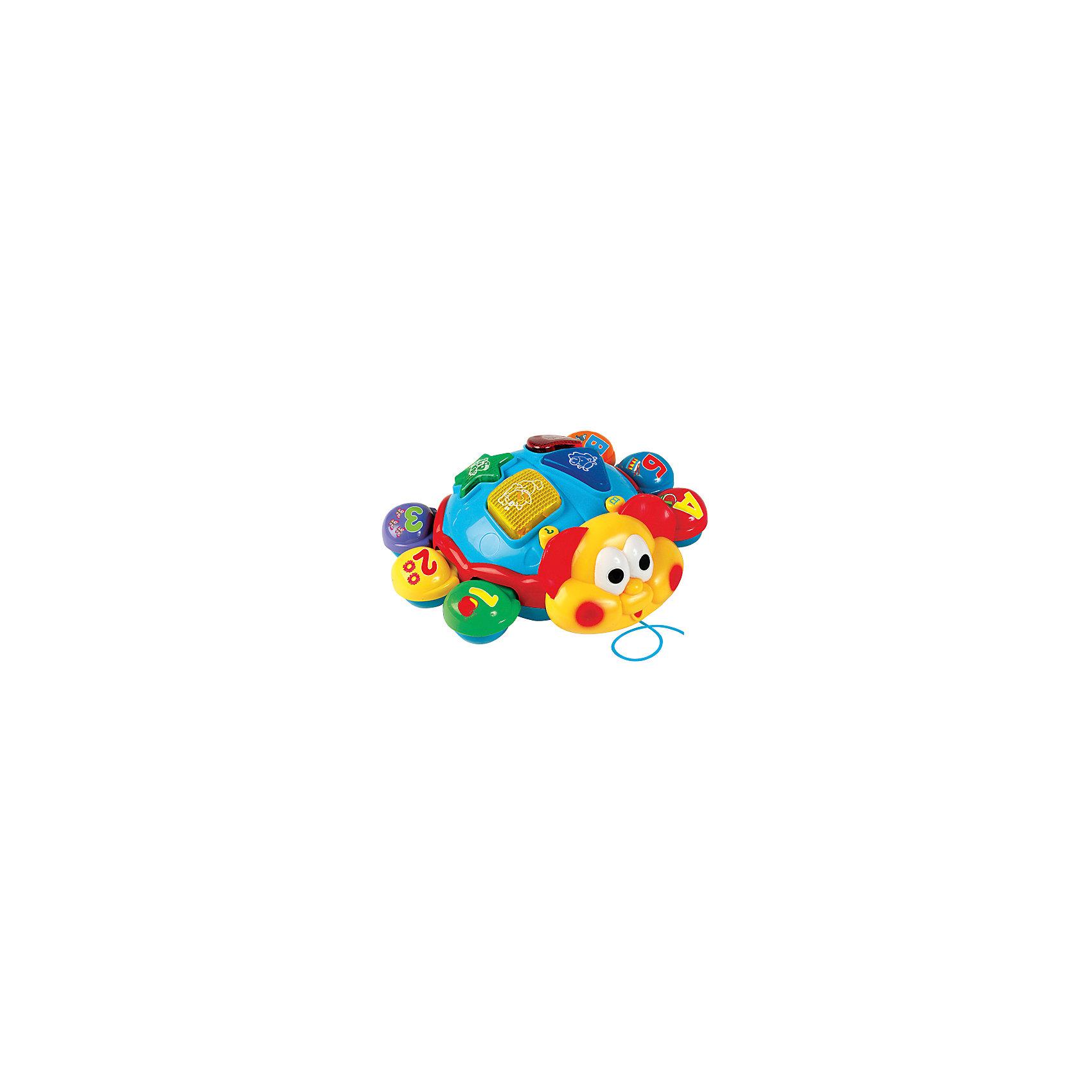 Интерактивная игрушка Умка Говорящий жук (свет, звук)Интерактивные игрушки для малышей<br>Говорящий Жук станет отличным подарком для малыша. Ребенок сразу обратитна на его яркий цвет. Жук споет 5 песен В. Шаинского из мультфильмов. Поможет выучит буквы и цифры, название животных и отличать их голаса, название формы, новые слова. Есть режим эксзамен где ребенок и родителе смогут проверить знания. Игрушку можно катать за веревочку. Сделана из прочного, высококачественного пластика. Развивает зрение, логику, мелкую моторику, слух, внимание, координацию движений. Рекомендовано детям от 6 месяцев. Работает от 3 батареек типа АА (входят в комплект).<br><br>Ширина мм: 260<br>Глубина мм: 90<br>Высота мм: 250<br>Вес г: 660<br>Возраст от месяцев: 72<br>Возраст до месяцев: 60<br>Пол: Унисекс<br>Возраст: Детский<br>SKU: 7117605