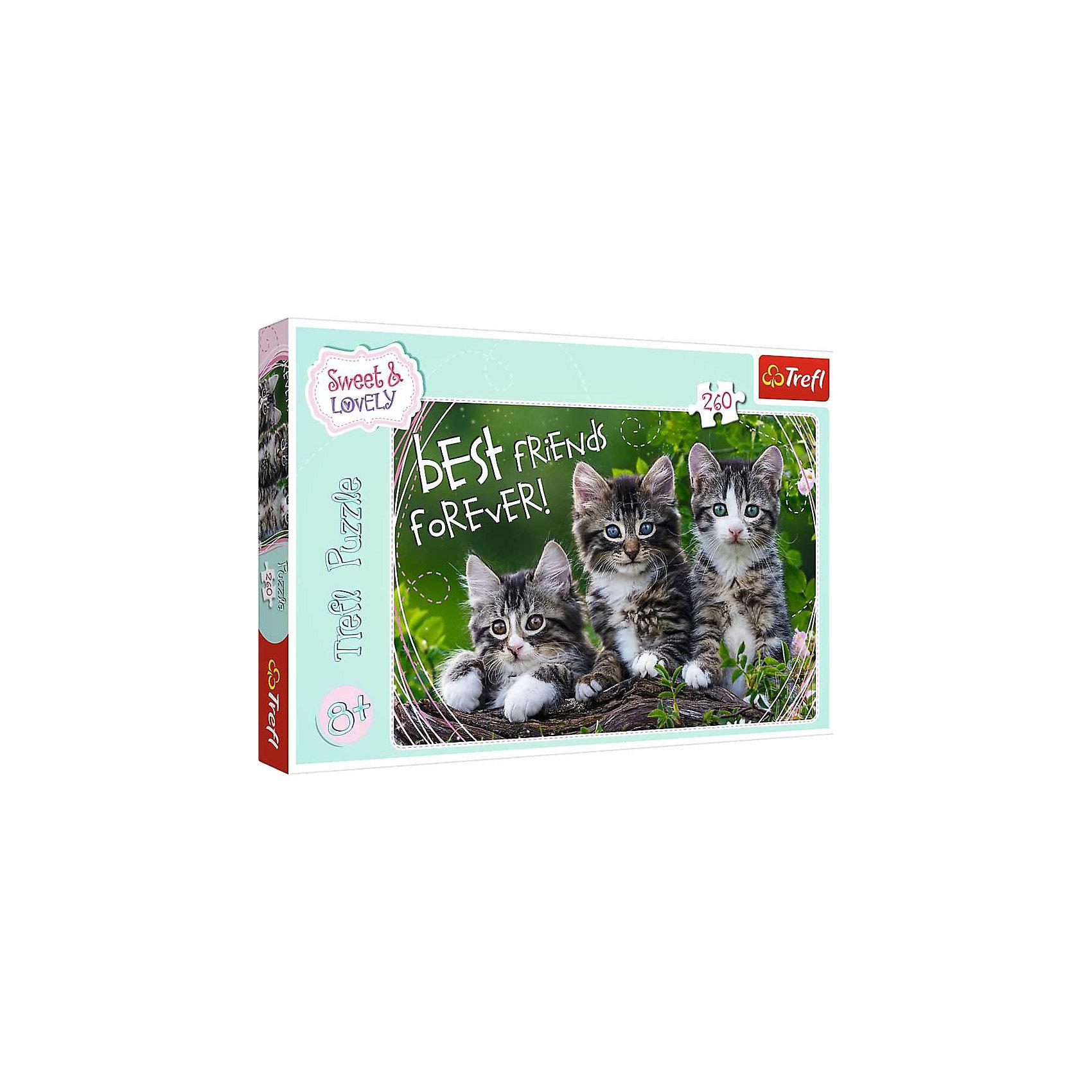 Пазлы «Дружные котята», 260 деталейПазлы для детей постарше<br>Пазл «Кошачья дружба» от Trefl из 200 элементов принадлежит к серии Sweet&amp;Lovely, которая создана для тех, кто любит очаровательных животных. В коллекцию, помимо этой головоломки, вошли еще несколько картин с другими котятами, лошадьми и щенками. Соберите их все! <br>Превосходное качество Trefl делает этот пазл желанным подарком: крепкая сцепка, насыщенные, не блекнущие со временем цвета, экологически чистые компоненты, утолщенный слой картона, антибликовое покрытие – то, что нужно для приятного досуга. <br>Количество деталей: 260. <br>Размеры картинки в собранном виде: 60х40 см. <br>Размеры коробки: 37,8х27,8х4,5 см. <br>Вес коробки: 0,55 кг. <br>Пазл предназначен для девочек старше 6 лет.<br><br>Ширина мм: 410<br>Глубина мм: 378<br>Высота мм: 266<br>Вес г: 670<br>Возраст от месяцев: 72<br>Возраст до месяцев: 144<br>Пол: Унисекс<br>Возраст: Детский<br>SKU: 7126360