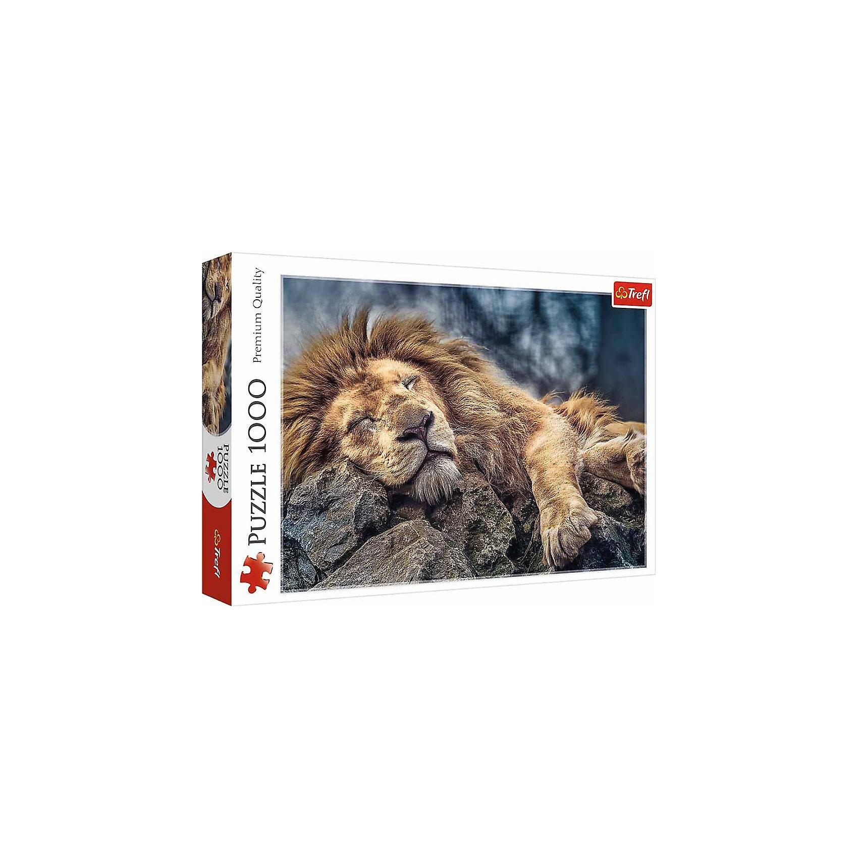 Пазлы Спящий лев, 1000 элементовПазлы для детей постарше<br>Сделайте чудесный подарок любителю дикой природы – пазл «Спящий лев» из 1000 деталей. Изображение величественного царя животных отличается прекрасной цветопередачей и высоким качеством. Пушистая рыжая шерсть льва выгодно оттеняется холодным фоном из камней и ветвей. Собрав прочные и красочные детали вместе, вы получите стильную картину, которой можно украсить любой интерьер.  <br><br>Интересная головоломка от широко известного бренда Trefl поможет скрасить вечер в компании друзей или семьи и подарит много положительных эмоций. <br><br> Количество элементов пазла: 1000. <br><br> Размер картинки в собранном виде: 68,3х48 см.<br><br>Ширина мм: 401<br>Глубина мм: 60<br>Высота мм: 270<br>Вес г: 750<br>Возраст от месяцев: 144<br>Возраст до месяцев: 2147483647<br>Пол: Унисекс<br>Возраст: Детский<br>SKU: 7126376