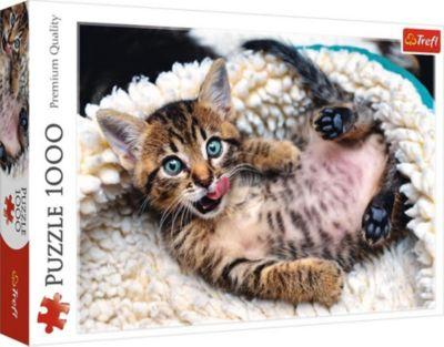 Trefl Пазлы Веселый котенок, 1000 элементов