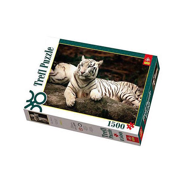 1500 дет. - Бенгальские тигрыПазлы классические<br>Характеристики товара:<br><br>• количество деталей: 1500 шт.;<br>• размер картинки: 85х58 см;<br>• возраст: от 14 лет;<br>,• материал: картон;<br>• размер упаковки: 40х27х6 см;<br>• страна бренда: Польша;<br>• страна производитель: Польша.<br><br>Пазлы «Бенгальские тигры» по достоинству оценят ценители диких животных. На картинке изображены два бенгальских тигра, отдыхающих в траве. Роскошная белая шкура в сочетании с выразительными синими глазами станет настоящим украшением любой комнаты дома.<br><br>Пазл состоит из 1500 элементов, поэтому набор отлично подойдет для семейного отдыха или для большой компании. Все детали изготовлены из плотного картона, устойчивого к деформации. Собирание пазлов поможет развить моторику рук, логическое и пространственное мышление, координацию движений, память.<br><br>1500 дет. - Бенгальские тигры, Trefl (Трефл) можно купить в нашем интернет-магазине.<br><br>Ширина мм: 401<br>Глубина мм: 270<br>Высота мм: 60<br>Вес г: 980<br>Возраст от месяцев: 168<br>Возраст до месяцев: 2147483647<br>Пол: Унисекс<br>Возраст: Детский<br>SKU: 7126419