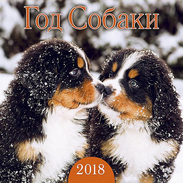 Календарь 2018  настенный перекидной Год СобакиНовинки Новый Год<br>Календарь настенный перекидной, размер 290х290мм, крепление - металическая пружина, упакован в индивидуальный пакет. Тема календаря Год собаки - с фотографиями щенков разных пород. Календарь на новый год станет приятным дополнением к любому подарку.<br>Ширина мм: 290; Глубина мм: 290; Высота мм: 10; Вес г: 116; Возраст от месяцев: -2147483648; Возраст до месяцев: 2147483647; Пол: Унисекс; Возраст: Детский; SKU: 7129582;