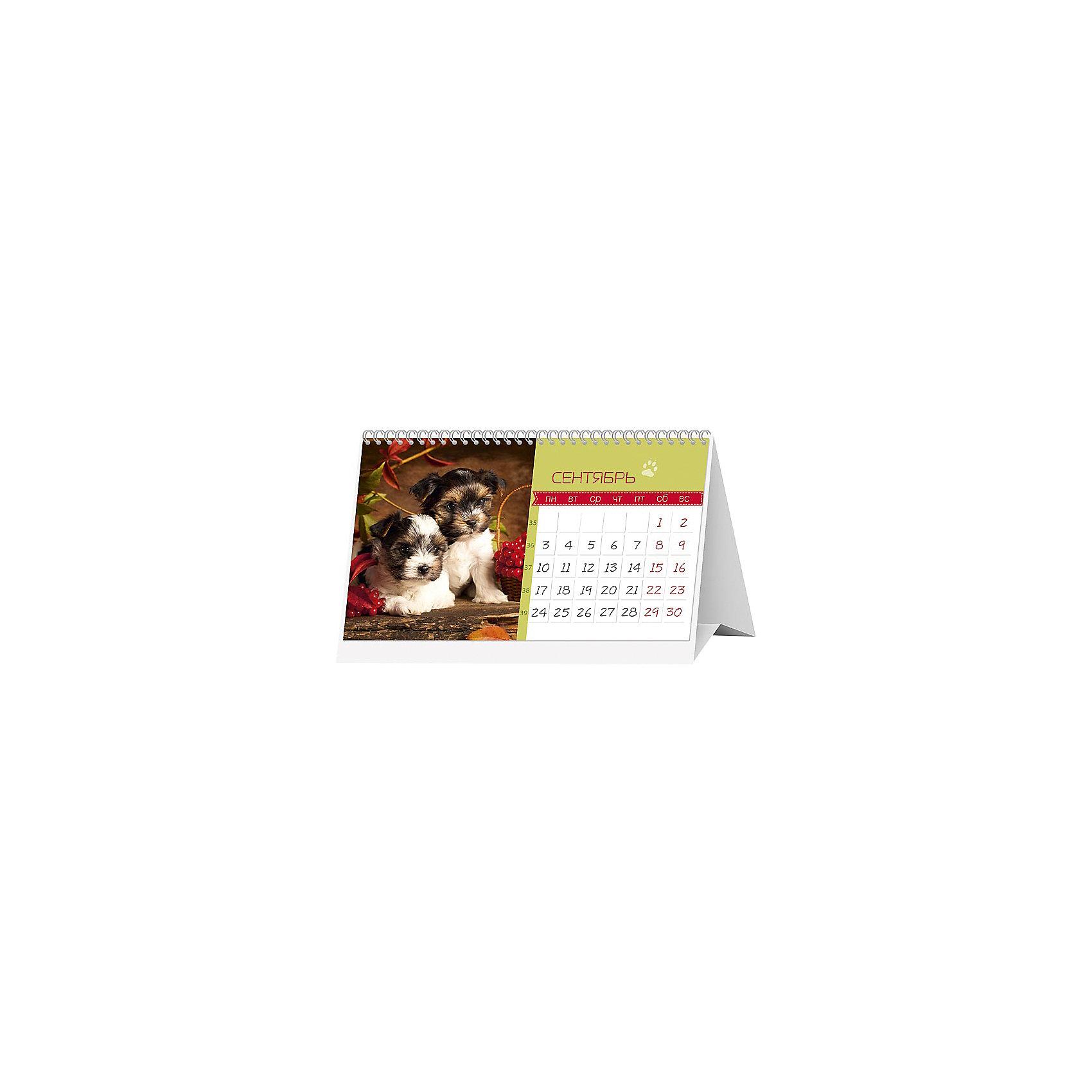 """Календарь 2018 настольный перекидной """"Меня зовут ГАВ"""" от myToys"""