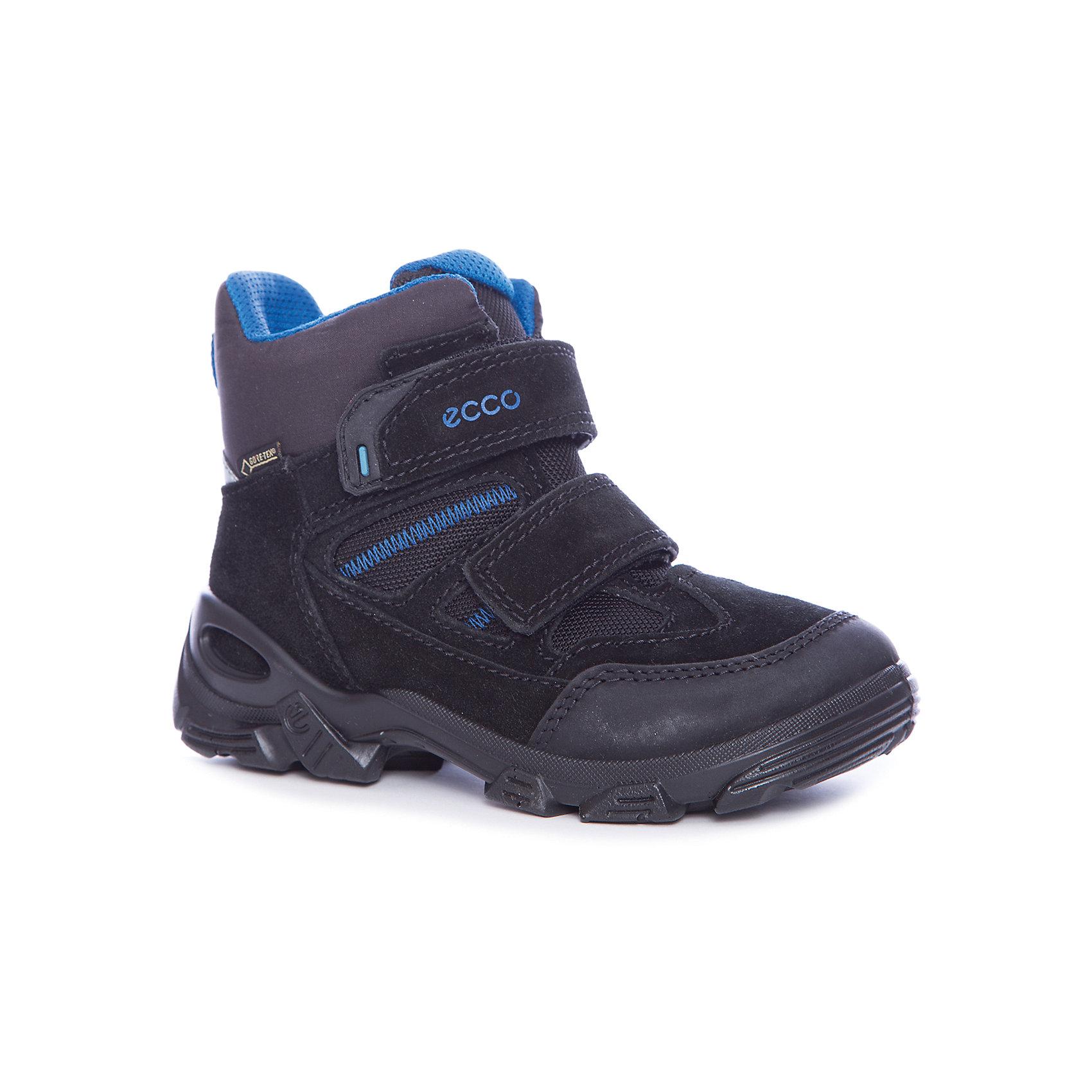 Ботинки ECCOБотинки<br>Ботинки ECCO<br>Ботинки для мальчиков выполнены из сочетания промасленного нубука, замши и текстиля. Теплые ботики с водонепроницаемой дышащей мембраной GORE-TEX станут отличным выбором для холодной зимней погоды. Благодаря современному утеплителю и толстой подошве, они отлично сохраняют ножки ребенка теплыми. Немаловажным плюсом является удобная застежка на липучку, благодаря чему даже маленький ребенок сможет самостоятельно быстро обуваться.<br>Состав:<br>Материал верха: пр.нубук/замша/текстиль<br>Материал подкладки: 60% Акрил 40% Полиэстер<br>Материал стельки: 100% п/э<br><br>Ширина мм: 262<br>Глубина мм: 176<br>Высота мм: 97<br>Вес г: 427<br>Цвет: черный<br>Возраст от месяцев: 72<br>Возраст до месяцев: 84<br>Пол: Унисекс<br>Возраст: Детский<br>Размер: 30,31,27,28,29<br>SKU: 7129854