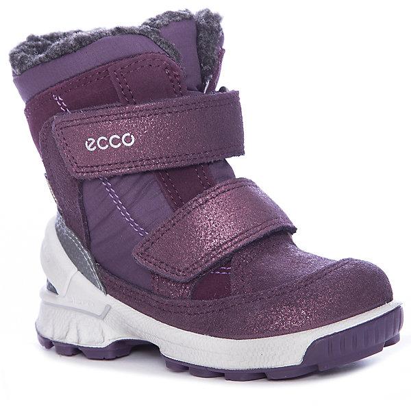 Ботинки ECCO для девочкиБотинки<br>Характеристики товара:<br><br>• цвет: фиолетовый<br>• внешний материал: замша, текстиль<br>• внутренний материал: акрил, полиэстер<br>• стелька: термостелька<br>• подошва: полимер<br>• сезон: зима<br>• мембранные<br>• температурный режим: от -30 до 0<br>• особенности модели: спортивный стиль<br>• застежка: липучки<br>• защита мыса <br>• подошва не скользит<br>• анатомические<br>• страна бренда: Дания<br>• страна изготовитель: Китай<br><br>Зимние детские сапоги от бренда ECCO легко надеваются благодаря удобной застежке. Стильные сапоги с мембраной Gore-Tex дополнены толстой устойчивой подошвой. Утепленные сапоги для ребенка ECCO - пример высокого всемирно признанного качества. <br><br>Сапоги ECCO (ЭККО) можно купить в нашем интернет-магазине.<br><br>Ширина мм: 257<br>Глубина мм: 180<br>Высота мм: 130<br>Вес г: 420<br>Цвет: лиловый<br>Возраст от месяцев: 72<br>Возраст до месяцев: 84<br>Пол: Женский<br>Возраст: Детский<br>Размер: 30,27,22,26,25,24,29,23,28<br>SKU: 7130081