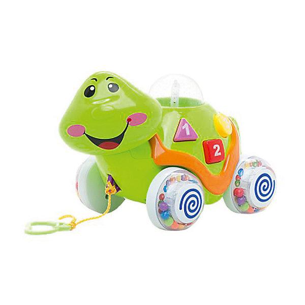 Развивающая черепашка-каталка Умка Львенок и Черепаха, свет звукКаталки и качалки<br>Характеристики:<br><br>• возраст: от 3 лет;<br>• тип игрушки: черепаха;<br>• цвет: зеленый;<br>• материал: пластик;<br>• высота игрушки: 15 см;<br>• размер: 22х18х15 см;<br>• вес: 660 гр; <br>• тип батареек: АА;<br>• наличие батареек: входят в комплект.<br>• страна производитель: Россия.<br><br>Обучающая черепаха «Львенок и Черепаха» со светом и звуком станет любимой игрушкой для  малыша возрастом от трех лет. Игрушка напоминает очаровательную и мудрую Черепаху из обожаемого многими малышами советского мультфильма «Львёнок и Черепаха». Она сделана из безвредных материалов в зеленом цвете. <br><br>Функциональная игрушка поможет крохе выучить названия животных, услышать их голоса, прослушать стихи, тренируя память и поднять себе настроение весёлой песенкой из мультика. Игрушку можно катать на верёвочке за собой или просто по дорогам игрушечного города, толкая её ручками. У нее есть встроенный механизм движения. <br><br>Всего черепашка знает 9 стихотворений, песенку из мультфильма, цифры, что поможет вместе с малышом выучить счет, животные, формы. Развивает память, внимание, моторику, слух, логику, цветовое восприятие, так как черепашка очень яркая и разноцветная, воображение, координацию движений.<br><br>Обучающую черепаху «Львенок и Черепаха» со светом и звуком можно купить в нашем интернет-магазине.<br><br>Ширина мм: 220<br>Глубина мм: 180<br>Высота мм: 150<br>Вес г: 660<br>Возраст от месяцев: 36<br>Возраст до месяцев: 84<br>Пол: Унисекс<br>Возраст: Детский<br>SKU: 7134895