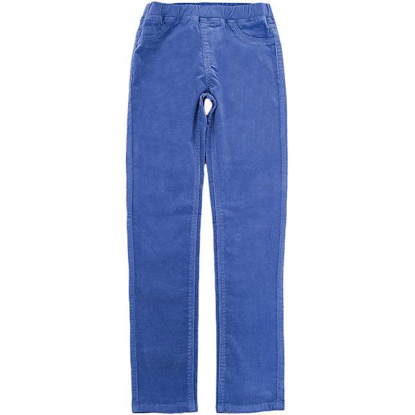 Брюки SELA для девочкиБрюки<br>Характеристики товара:<br><br>• цвет: синий<br>• состав ткани: 98% хлопок, 2% эластан<br>• сезон: демисезон<br>• пояс: резинка<br>• страна бренда: Россия<br>• страна производства: Бангладеш<br><br>Такие хлопковые брюки для девочки от Sela благодаря натуральному материалу не мешают коже дышать и не вызывают аллергии. Модные брюки для девочки помогут разнообразить гардероб ребенка. Брюки для ребенка сшиты из качественного материала, легкого в уходе.<br><br>Брюки Sela (Села) для девочки можно купить в нашем интернет- магазине.<br>Ширина мм: 215; Глубина мм: 88; Высота мм: 191; Вес г: 336; Цвет: синий; Возраст от месяцев: 72; Возраст до месяцев: 84; Пол: Женский; Возраст: Детский; Размер: 122,152,146,140,134,128; SKU: 7136813;