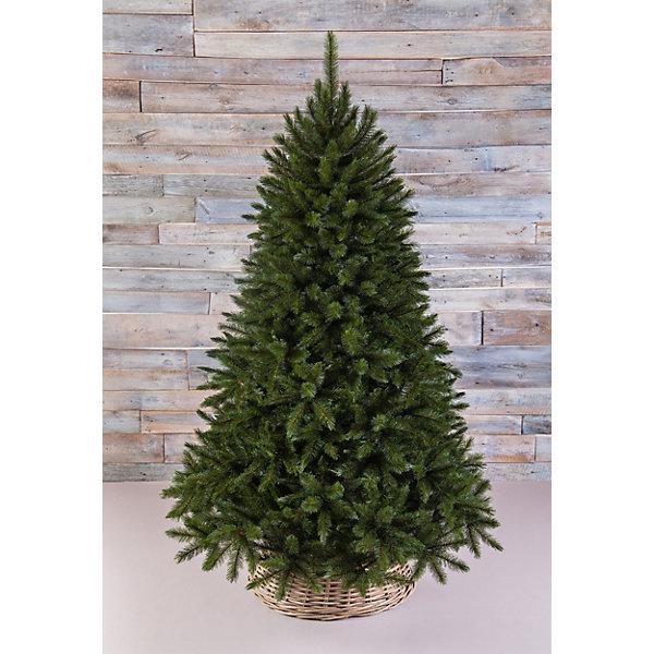 Искусственная елка Triumph Tree Лесная красавица, 120 см (зеленая)Искусственные ёлки<br>Характеристики товара: <br><br>• высота: 120 см.;<br>• нижний диаметр: 1,09 м.; <br>• длина иглы: 3 см.;<br>• размер коробки: 79x32x23 см.;<br>• вес: 6,0 кг.;<br>• цвет: зеленый.<br><br>Эта Ель необыкновенно нежна и изыскана. У данной модели длинные пушистые ветки, раскидистая, необыкновенно густая крона с очень широким нижним диаметром. Благодаря специальной технологии обрезки, кончики темно-зеленой хвои кажутся припорошеными едва заметным серебристым инеем, который придает облику новогоднего дерева воздушность и зимнее очарование. <br><br>Дерево выглядит очень нарядно. Эта элитная модЕль искусственной сосны удовлетворит самый взыскатЕльный вкус и украсит любое новогоднее торжество.<br><br> Триумф Ель Лесную красавицу можно купить в нашем интернет-магазине.<br><br>Ширина мм: 790<br>Глубина мм: 320<br>Высота мм: 230<br>Вес г: 6000<br>Возраст от месяцев: 36<br>Возраст до месяцев: 2147483647<br>Пол: Унисекс<br>Возраст: Детский<br>SKU: 7143031