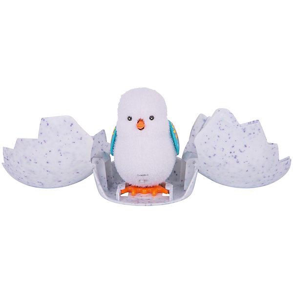 Интерактивная игрушка Moose Little Live Pets Цыпленок (в ассортименте)Интерактивные животные<br>Характеристики товара:<br><br>• возраст: от 5 лет;<br>• материал: пластик;<br>• в комплекте: цыпленок, скорлупа;<br>• тип батареек: 3 батарейки Button Cell;<br>• наличие батареек: в комплекте;<br>• размер упаковки: 22х18х6,5 см;<br>• вес упаковки: 270 гр.;<br>• страна производитель: Китай.<br><br>Интерактивный цыпленок Moose Little Live Pets — забавный цыпленок, за которым можно наблюдать, как он вылупляется из скорлупы. Сначала он бьет по яйцу, которое раскрывается, а затем издает писк. Как только он освободится из скорлупы, цыпленок начинает прыгать. Если погладить цыпленка по голове, то он запищит. Если же гладить его длительное время, то ребенок услышит мелодию. После игры цыпленок засыпает. Игрушка выполнена из качественных безопасных материалов.<br><br>Интерактивного цыпленка Moose Little Live Pets можно приобрести в нашем интернет-магазине.<br>Ширина мм: 180; Глубина мм: 65; Высота мм: 220; Вес г: 270; Возраст от месяцев: 60; Возраст до месяцев: 120; Пол: Унисекс; Возраст: Детский; SKU: 7144250;