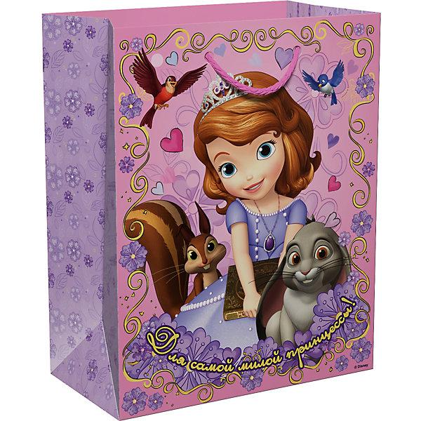 Подарочный пакет Росмэн София Прекрасная. Для принцессыДетские подарочные пакеты<br>Подарочный бумажный пакет Для принцессы ТМ Disney София Прекрасная декорирован милым, романтичным принтом. Размер: 23х18х10 см. Плотность бумаги: 128 г/м2.<br>Ширина мм: 230; Глубина мм: 180; Высота мм: 3; Вес г: 39; Возраст от месяцев: 36; Возраст до месяцев: 144; Пол: Женский; Возраст: Детский; SKU: 7175766;