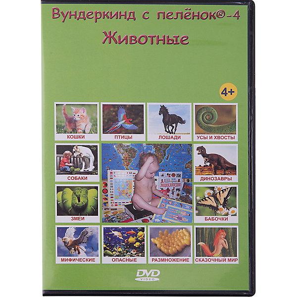 Развивающий DVD-диск Вундеркинд с пелёнок Животные, русский языкАудиокниги, DVD и CD<br>Характеристики:<br><br>• ISBN: 4612731630058;<br>• бренд: Вундеркинд с пеленок;<br>• вес: 10 гр;<br>• размер: 19x1,35x1 см;<br>• возраст: от 4 лет;<br>• продолжительность: 188 мин;<br>• размер кадра: 4:3;<br>• звук: Dolby digital, stereo.<br><br>DVD «Вундеркинд с пеленок-4. Животные» даст ребенку ответы на все вопросы о животных.<br><br>Как и из чего пчёлы делают вкусный мёд? Зачем зебре черно-белые полоски, а жирафу коричневые пятна? Какие бывают клювы? А может они есть не только у птиц? Как и когда жили динозавры? Зачем нужны усы котам и хвосты собакам? Как размножаются животные? Кто где живёт и кто что пьет? Какие животные самые опасные в мире? Кто такие василиск, единорог и толстолобик? Как звери воспитывают своих детей? Кто такие ластоногие и рукокрылые?<br><br>Обо всём этом расскажет ребёнку данная видео энциклопедия.<br>Дети узнают сотни интересных фактов о животных, познакомятся как с известными, так и с малоизученными обитателями нашей огромной планеты.<br><br>DVD «Вундеркинд с пеленок-4. Животные» можно купить в нашем интернет-магазине.<br>Ширина мм: 190; Глубина мм: 135; Высота мм: 10; Вес г: 10; Возраст от месяцев: 48; Возраст до месяцев: 84; Пол: Унисекс; Возраст: Детский; SKU: 7182287;