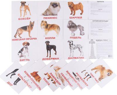 Набор обучающих карточек Вундеркинд с пелёнок Породы собак 20 штук