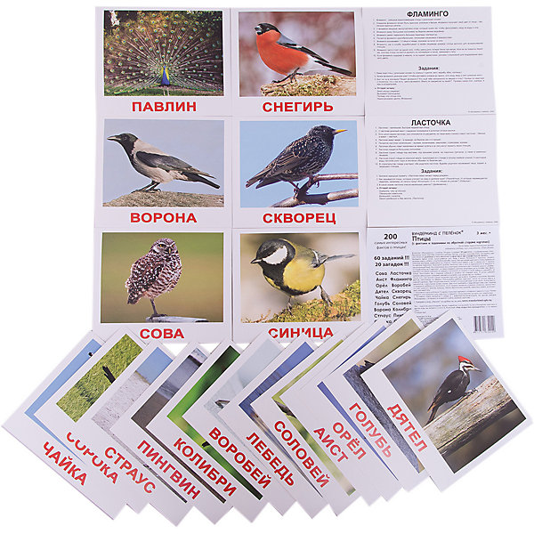 Набор обучающих карточек Вундеркинд с пелёнок Птицы 20 штукОбучающие карточки<br>Характеристики:<br><br>• ISBN: 4612731630249;<br>• бренд: Вундеркинд с пеленок;<br>• вес: 190 гр;<br>• материал: картон;<br>• размер: 19,5x16,5x1 см;<br>• возраст: от 3 лет;<br>• количество карточек: 20 шт.<br><br>Комплект карточек «Птицы» представляет из себя двадцать карточек из мелованного картона. На каждой из них фотографии различных птиц на фоне в виде естественной среды обитания, чтобы дать ребенку представление об образе жизни пернатых.<br>Изучение таких картинок поможет развить у ребенка интерес и поможет в формировании фотографической памяти.<br><br>В набор карточек вошли фотографии разных птиц: голубь, синица, воробей, снегирь, соловей, дятел, скворец, ласточка, сорока, ворона, чайка, аист, лебедь, орёл, сова, павлин, фламинго, пингвин, колибри, страус.<br><br>Для закрепления усвоенной информации на обороте карточек указанны десять занимательных фактов о природе, три задания и одна логическая загадка.<br><br>Комплект карточек «Птицы» можно купить в нашем интернет-магазине.<br>Ширина мм: 195; Глубина мм: 165; Высота мм: 10; Вес г: 190; Возраст от месяцев: 3; Возраст до месяцев: 36; Пол: Унисекс; Возраст: Детский; SKU: 7182305;
