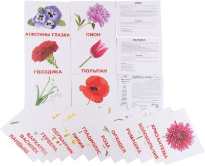 Набор обучающих карточек Вундеркинд с пелёнок Цветы 20 штук