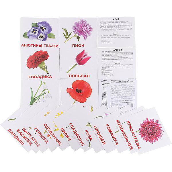 Набор обучающих карточек Вундеркинд с пелёнок Цветы 20 штукОбучающие карточки<br>Характеристики:<br><br>• ISBN: 4612731630256;<br>• бренд: Вундеркинд с пеленок;<br>• вес: 190 гр;<br>• материал: картон;<br>• размер: 19,5x16,5x1 см;<br>• возраст: от 3 лет;<br>• количество карточек: 20 шт.<br><br>Комплект карточек «Цветы» представляет из себя двадцать карточек с изображением цветов на белом фоне на качественном картоне. Изучение таких картинок поможет развить у ребенка интерес и поможет в формировании фотографической памяти.<br><br>В набор карточек вошли фотографии разных фруктов: роза, ирис, пион, лилия, гвоздика, ландыш, одуванчик, василёк, нарцисс, орхидея, гладиолус, гербера, бархатец, анютины глазки, колокольчик, мак, ромашка, тюльпан, подснежник, хризантема.<br><br>Для закрепления усвоенной информации на обороте карточек указанны семь занимательных фактов, три задания и одна логическая загадка.<br><br>Комплект карточек «Цветы» можно купить в нашем интернет-магазине.<br>Ширина мм: 195; Глубина мм: 165; Высота мм: 10; Вес г: 190; Возраст от месяцев: 3; Возраст до месяцев: 36; Пол: Унисекс; Возраст: Детский; SKU: 7182310;