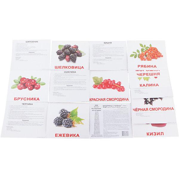 Набор обучающих карточек Вундеркинд с пелёнок Ягоды 20 штукОбучающие карточки<br>Характеристики:<br><br>• ISBN: 4612731630393;<br>• бренд: Вундеркинд с пеленок;<br>• вес: 190 гр;<br>• материал: картон;<br>• размер: 19,5x16,5x1 см;<br>• возраст: от 3 лет;<br>• количество карточек: 20 шт.<br><br>Комплект карточек «Ягоды» представляет из себя двадцать карточек с изображением ягод на качественном картоне. Изучение таких картинок поможет развить у ребенка интерес и поможет в формировании фотографической памяти.<br><br>В набор карточек вошли фотографии различных ягод: 1 брусника, виноград, вишня, ежевика, земляника, шелковица, кизил, клубника, крыжовник, красная смородина, морошка, малина, облепиха, черная смородина, рябина, черешня, черника, шиповник, клюква, калина.<br><br>Для закрепления усвоенной информации на обороте карточек указанны десять занимательных фактов, три задания и одна логическая загадка.<br><br>Комплект карточек «Ягоды» можно купить в нашем интернет-магазине.<br>Ширина мм: 195; Глубина мм: 165; Высота мм: 10; Вес г: 190; Возраст от месяцев: 3; Возраст до месяцев: 36; Пол: Унисекс; Возраст: Детский; SKU: 7182312;