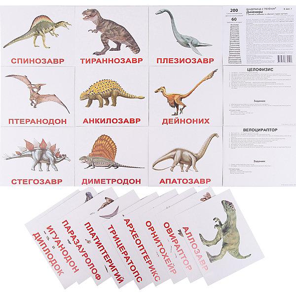 Набор обучающих карточек Вундеркинд с пелёнок Динозавры 20 штукОбучающие карточки<br>Характеристики:<br><br>• ISBN: 4612731630492;<br>• бренд: Вундеркинд с пеленок;<br>• вес: 190 гр;<br>• материал: картон;<br>• размер: 19,5x16,5x1 см;<br>• возраст: от 3 лет;<br>• количество карточек: 20 шт.<br><br>Комплект карточек «Динозавры» представляет из себя двадцать карточек с изображением динозавров на белом фоне на качественном картоне. Изучение таких картинок поможет развить у ребенка интерес и поможет в формировании фотографической памяти.<br><br>В набор карточек вошли фотографии различных динозавров: аллозавр, апатозавр, анкилозавр, археоптерикс, велоцираптор, дейноних, диметродон, диплодок, игуанодон, овираптор, орнитохейр, паразауролоф, платиптеригий, плезиозавр, птеранодон, спинозавр, стегозавр, тираннозавр, трицератопс, целофизис.<br><br>Для закрепления усвоенной информации на обороте карточек указанны двенадцать занимательных фактов о динозаврах, два задания и одна логическая загадка.<br><br>Комплект карточек «Динозавры» можно купить в нашем интернет-магазине.<br>Ширина мм: 195; Глубина мм: 165; Высота мм: 10; Вес г: 190; Возраст от месяцев: 3; Возраст до месяцев: 36; Пол: Унисекс; Возраст: Детский; SKU: 7182314;