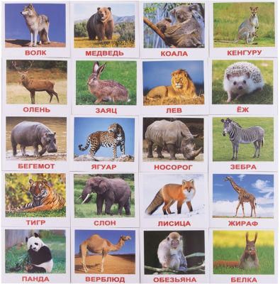 Набор обучающих мини-карточек Вундеркинд с пелёнок Дикие животные 20 штук