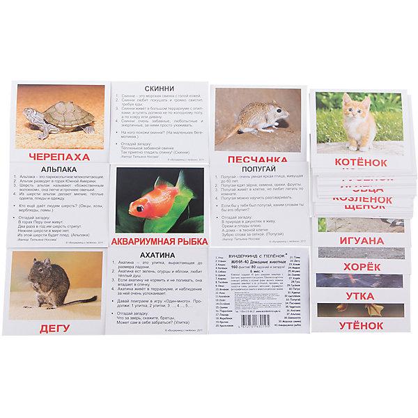Набор обучающих мини-карточек Вундеркинд с пелёнок Домашние животные 40 штукОбучающие карточки<br>Характеристики:<br><br>• ISBN: 4612731630195;<br>• бренд: Вундеркинд с пеленок;<br>• вес: 80 гр;<br>• материал: картон;<br>• размер: 10x8,5x1,5 см;<br>• возраст: от 1 года;<br>• количество карточек: 40 шт.<br><br>Комплект карточек МИНИ-рус. яз. «Домашние животные» представляет из себя двухсторонний набор с карточками с подписями. На одной стороне карточек изображены домашние животные, а на другой стороне — факты, задания и загадки.<br><br>Поучительные карточки развивают память, внимание, усидчивость и другие полезные навыки. Набор подходит для детей от 1 года. В набор карточек входят разные фотографии животных: кошка, котёнок, собака, щенок, хомяк, шиншилла, морская свинка, скинни, дегу, корова, телёнок, лошадь, жеребёнок, курица, петух, цыплёнок, утка, утёнок, гусь, гусёнок, индюк, коза, козлёнок, овца, ягнёнок, кролик, крольчонок, осёл, ослёнок, пони, попугай, песчанка, черепаха, свинья, поросёнок, хорёк, игуана, альпака, ахатина, аквариумная рыбка.<br><br>Комплект карточек МИНИ-рус. яз. «Домашние животные» можно купить в нашем интернет-магазине.<br>Ширина мм: 100; Глубина мм: 85; Высота мм: 15; Вес г: 80; Возраст от месяцев: 12; Возраст до месяцев: 60; Пол: Унисекс; Возраст: Детский; SKU: 7182330;