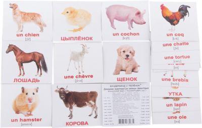 Набор обучающих мини-карточек Вундеркинд с пелёнок Les animaux domestiques/Домашние животные , двухсторонний 20 штук