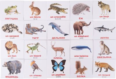 Набор обучающих мини-карточек Вундеркинд с пелёнок Les animaix sauvages/Дикие животные , двухсторонний 20 штук