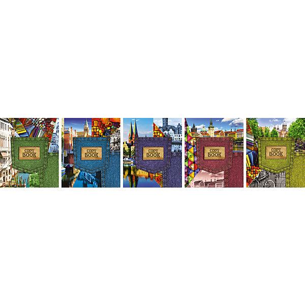 Комплект тетрадей в клетку АппликА Джинсовый стиль 5 шт, 48 листов с полямиБумажная продукция<br>Характеристики товара:<br><br>• количество тетрадей: 5;<br>• количество листов: 48;<br>• формат: А5;<br>• возраст: от 3 лет;<br>• материал: бумага, офсет;<br>• обложка: целлюлозный картон;<br>• размер упаковки: 20х16х2,5 см;<br>• страна-производитель: Россия.<br><br>Комплект «Ассорти Джинсовый стиль» состоит из пяти общих тетрадей формата А5. Каждая тетрадь содержит 48 листов, выполненных из качественной офсетной бумаги. Страницы разлинованы в клетку, есть красные поля. Обложка выполнена из целлюлозного картона, украшена разнообразными джинсовыми композициями и выборочным лаком с блестками.<br><br>Комплект общих тетрадей в клетку из 5шт., Ассорти Джинсовый стиль  - 48 листов формата А5 с полями, КТС-ПРО можно купить в нашем интернет-магазине.<br><br>Ширина мм: 200<br>Глубина мм: 160<br>Высота мм: 25<br>Вес г: 595<br>Возраст от месяцев: 36<br>Возраст до месяцев: 1188<br>Пол: Унисекс<br>Возраст: Детский<br>SKU: 7185406