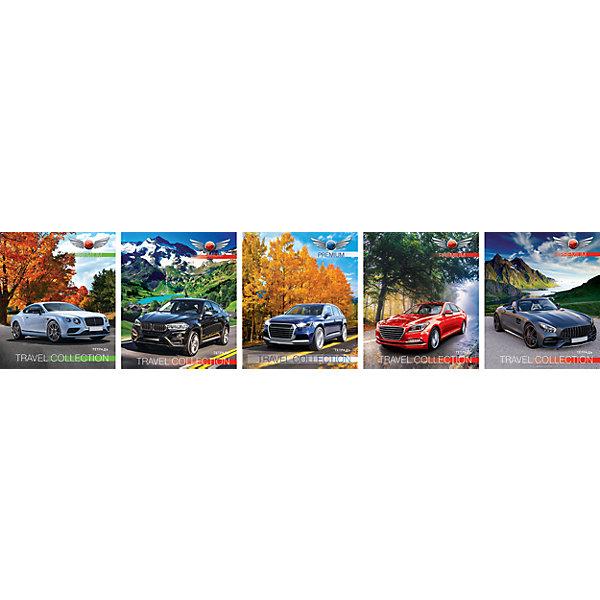 Комплект тетрадей в клетку АппликА Автомобили 5 шт, 48 листовБумажная продукция<br>Характеристики товара:<br><br>• количество тетрадей: 5;<br>• количество листов: 48;<br>• формат: А5;<br>• возраст: от 3 лет;<br>• материал: бумага, офсет;<br>• обложка: мелованный картон;<br>• размер упаковки: 20х16х2,5 см;<br>• страна-производитель: Россия. <br><br>Тетради из набора «Автомобили» отлично подойдут как школьникам, так и студентам. На обложках тетрадей изображены различные автомобили, что особенно порадует автолюбителей. Тетради состоят из 48 листов, разлинованных в голубую клетку с красными полями по краям. Страницы выполнены из качественной офсетной бумаги. Обложка тетради изготовлена из мелованного картона. Она надежно защищает содержимое тетрадей от намокания.<br><br>Комплект общих тетрадей в клетку из 5шт., Ассорти Автомобили - 48 листов формата А5, КТС-ПРО можно купить в нашем интернет-магазине.<br><br>Ширина мм: 200<br>Глубина мм: 165<br>Высота мм: 28<br>Вес г: 530<br>Возраст от месяцев: 36<br>Возраст до месяцев: 1188<br>Пол: Мужской<br>Возраст: Детский<br>SKU: 7185408