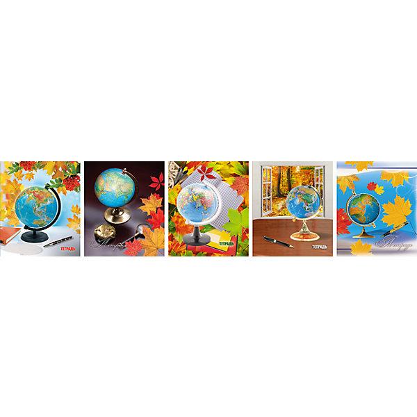 Комплект тетрадей в клетку АппликА Глобус 5 шт, 48 листовБумажная продукция<br>Характеристики товара:<br><br>• количество тетрадей: 5;<br>• количество листов: 48;<br>• формат: А5;<br>• возраст: от 3 лет;<br>• материал: бумага, офсет;<br>• обложка: мелованный картон;<br>• размер упаковки: 20х16х2,5 см;<br>• страна-производитель: Россия. <br><br>Набор общих тетрадей «Глобус» состоит из 5 тетрадей по 48 листов. Листы разлинованы в клетку и дополнены четкими красными полями. Листы выполнены из качественной офсетной бумаги, крепятся к обложке скобами. Обложка изготовлена из мелованного картона. Красивый дизайн с изображением глобусов подойдет и школьникам, и студентам.<br><br>Комплект общих тетрадей в клетку из 5шт., Ассорти Глобус - 48 листов формата А5, КТС-ПРО можно купить в нашем интернет-магазине.<br><br>Ширина мм: 200<br>Глубина мм: 165<br>Высота мм: 28<br>Вес г: 530<br>Возраст от месяцев: 36<br>Возраст до месяцев: 1188<br>Пол: Унисекс<br>Возраст: Детский<br>SKU: 7185409