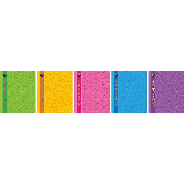 Комплект тетрадей в клетку АппликА Паттерн. Радуга 5 шт, 48 листовБумажная продукция<br>Характеристики товара:<br><br>• количество тетрадей: 5;<br>• количество листов: 48;<br>• формат: А5;<br>• возраст: от 3 лет;<br>• материал: бумага, офсет;<br>• обложка: мелованный картон;<br>• размер упаковки: 20х16х2,5 см;<br>• страна-производитель: Россия. <br><br>Тетради «Ассорти Паттерн Радуга» надежно сохранят записи и заметки учеников или студентов. Внутренний блок каждой тетради состоит из 48 листов в клетку. Клетка выполнена в классическом голубом цвете, поля - красного цвета. Листы изготовлены из качественной офсетной бумаги. Внутренний блок крепится к обложке с помощью металлических скоб. Обложка из мелованного картона надежно защитит внутренний блок от намокания. <br><br>Комплект общих тетрадей в клетку из 5шт., Ассорти Паттерн. Радуга - 48 листов формата А5, КТС-ПРО можно купить в нашем интернет-магазине.<br>Ширина мм: 200; Глубина мм: 165; Высота мм: 28; Вес г: 530; Возраст от месяцев: 36; Возраст до месяцев: 1188; Пол: Унисекс; Возраст: Детский; SKU: 7185411;