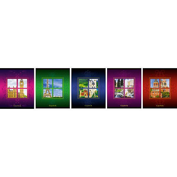 Комплект тетрадей в клетку АппликА Взгляни по новому 5 шт, 48 листовБумажная продукция<br>Характеристики товара:<br><br>• количество тетрадей: 5;<br>• количество листов: 48;<br>• формат: А5;<br>• возраст: от 3 лет;<br>• материал: офсет;<br>• обложка: мелованный картон;<br>• размер упаковки: 20х16,5х2,5 см;<br>• страна-производитель: Россия. <br><br>В набор «Ассорти Взгляни по новому» входят 5 общих тетрадей формата А5, 48 листов. Тетради разлинованы в классическую голубую клетку, есть четкие красные поля. Внутренний блок выполнен из офсетной бумаги, обложка - из мелованного картона. Ко всему прочему, данный комплект тетрадей отличается необычным дизайном - двойная обложка и вырубное окно, несомненно, порадуют всех любителей оригинальных вещей.<br><br>Комплект общих тетрадей в клетку из 5шт., Ассорти Взгляни по новому- 48 листов формата А5, КТС-ПРО можно купить в нашем интернет-магазине.<br><br>Ширина мм: 200<br>Глубина мм: 165<br>Высота мм: 25<br>Вес г: 565<br>Возраст от месяцев: 36<br>Возраст до месяцев: 1188<br>Пол: Унисекс<br>Возраст: Детский<br>SKU: 7185418