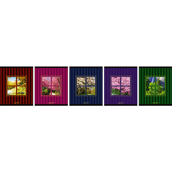 Купить Комплект тетрадей в клетку АппликА Вид из окна 5 шт, 48 листов, Россия, Унисекс