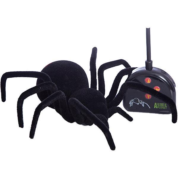 Радиоуправляемый паук Edu-Toys Черная вдова, 20 смДругие радиуправляемые игрушки<br>Характеристики:<br><br>• тип игрушки: паук;<br>• возраст: от 8 лет;<br>• размер: 33x10x17 см;<br>• вес: 95  гр;<br>• тип батареек: 2хАА и 3хААА;<br>• наличие батареек: в комплект не входят;<br>• упаковка: коробка;<br>• материал: пластик;<br>• бренд:  Edu-Toys.<br><br>Паук Р/У «Черная вдова» подойдет для детей от восьми лет и старше. Этот паук на радиоуправлении изготовлен в натуральную величину. Он выглядит как настоящий и что самое интересное – передвигается как самый настоящий паук.<br><br> Паук может двигаться в любую сторону по любой гладкой поверхности и способен преодолеть расстояние до 8 метров. Дистанционное управление адаптировано к детской руке. Игрушка рассчитана на детишек, которые любят подшучивать над своими друзьями, пугая их. <br><br>Паука Р/У «Черная вдова»  можно купить в нашем интернет-магазине.<br>Ширина мм: 330; Глубина мм: 100; Высота мм: 170; Вес г: 1; Возраст от месяцев: 96; Возраст до месяцев: 2147483647; Пол: Мужской; Возраст: Детский; SKU: 7193443;