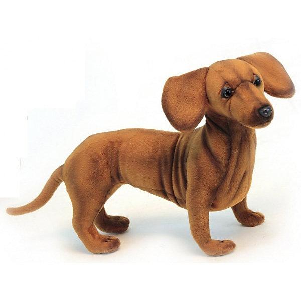 Мягкая игрушка Hansa Такса стоящая, 42 смМягкие игрушки животные<br>Характеристики товара:<br><br>• возраст: от 3 лет;<br>• материал: искусственный мех;<br>• размер игрушки: 42 см;<br>• размер упаковки: 42х23х14 см;<br>• вес упаковки: 840 гр.;<br>• страна производитель: Филиппины.<br><br>Мягкая игрушка «Такса» Hansa станет для ребенка настоящим плюшевым другом. У собачки мягкая шерстка, добрые глазки, длинные ушки. Игрушка выполнена из качественного искусственного меха, безопасного для детей. Мех настолько мягкий и приятный, что игрушку можно брать с собой в кроватку и спать в обнимку.<br><br>Игрушки Hansa точно повторяют настоящее животное, изготовлены из искусственного меха, шьются и набиваются вручную.<br><br>Мягкую игрушку «Такса» Hansa можно приобрести в нашем интернет-магазине.<br><br>Ширина мм: 420<br>Глубина мм: 140<br>Высота мм: 230<br>Вес г: 840<br>Возраст от месяцев: 36<br>Возраст до месяцев: 2147483647<br>Пол: Унисекс<br>Возраст: Детский<br>SKU: 7199063