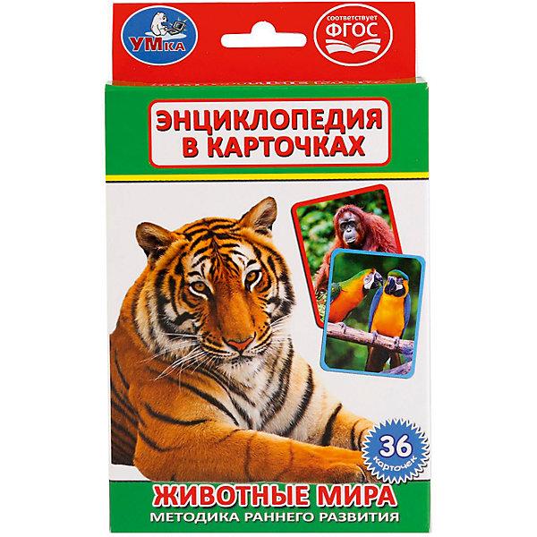 Карточки развивающие Животные мира 36 карточекОбучающие карточки<br>• ISBN: 4690590121467;<br>• возраст: от 3 лет;<br>• иллюстрации: цветные;<br>• упаковка: картонная коробка;<br>• материал: картон;<br>• количество карточек: 36;<br>• формат: 16х10х2 см.;<br>• вес: 110 гр.;<br>• издательство: УМКА;<br>• страна: Россия.<br><br>Карточки развивающие «Животные мира» - набор увлекательных карточек и игр даст ребенку возможность узнать много нового и интересного. Комплект состоит из ярких и красочных карточек, содержащих полезную информацию о представителях животного мира и оформленных превосходными фотографиями. <br><br>Развивающие детские книги «УМКА» полностью отвечают современной тенденции книжного рынка – интерактивность и обучение детей раннего возраста и дошкольников. Широкий ассортимент книг основан на авторском тексте, красочных иллюстрациях, любимых мультяшных героях и  безупречном качестве.<br><br>Уникальные развивающие карточки также позволят родителям придумать занимательные игры. Данный набор - отличный выбор как для подарка, так и для собственного использования.<br><br>Карточки развивающие «Животные мира», 36 карточек, Изд. УМКА можно купить в нашем интернет-магазине.<br>Ширина мм: 16; Глубина мм: 2; Высота мм: 10; Вес г: 110; Возраст от месяцев: 36; Возраст до месяцев: 84; Пол: Унисекс; Возраст: Детский; SKU: 7225548;
