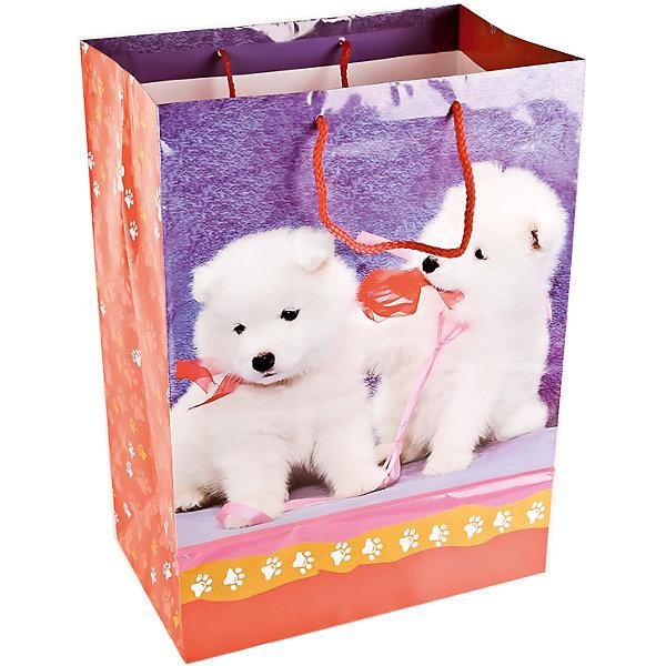 Пакет подарочный Домашине животные  Собаки  33Х46Х20 см глянцевыйДетские подарочные пакеты<br>Характеристики товара:<br><br>• возраст: от 3 лет;<br>• упаковка: пакет;<br>• размер пакета: 33х46х20 см.;<br>• цвет: мультиколор;<br>• материал: бумага;<br>• бренд, страна-производитель: Веселый праздник, Китай.<br>                                                                                                                                                                                                                                                                                                              Подарочный пакет «Домашине животные  Собаки» станет неотъемлемой частью детского подарка. Красочный пакет принесет ребенку радость предвкушения и ему будет интересно заглянуть в него, чтобы узнать, что же приготовили родные или друзья ему на день рождения, да и на любой другой праздник. <br><br>Такая упаковка подойдёт для большого подарка. Изделие выполненно из прочной глянцевой бумаги с красочным изображением двух милых щенков.<br><br>Подарочный пакет «Домашине животные  Собаки», 33х46х20 см., Веселый праздник  можно купить в нашем интернет-магазине.<br>Ширина мм: 33; Глубина мм: 20; Высота мм: 46; Вес г: 150; Возраст от месяцев: 36; Возраст до месяцев: 168; Пол: Унисекс; Возраст: Детский; SKU: 7225714;