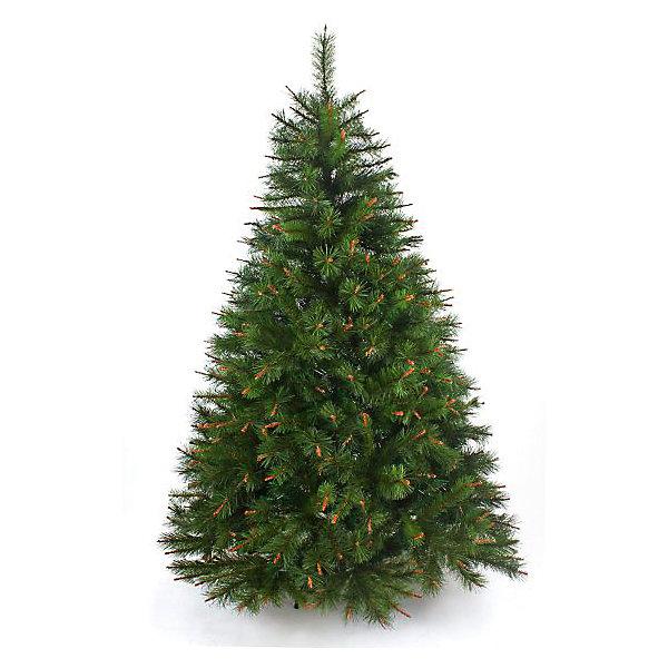 Сосна ПРАЗДНИЧНАЯ 120 смИскусственные ёлки<br>Материал - леска. Тип иглы - сосна, чередуются ветви с длиной иглы - 5 см, 3 см. 2 секции, 214 веточек, диаметр нижней кроны 86,4 см. Подставка - пластик. Комбинация использования веток с разным оттенком и 2-х цветной хвои, имитация древесины ветви, придает ели по-настоящему роскошный вид. Простая сборка - стоит только отогнуть ветви и распушить их.<br>Ширина мм: 200; Глубина мм: 200; Высота мм: 1200; Вес г: 4300; Возраст от месяцев: 36; Возраст до месяцев: 2147483647; Пол: Унисекс; Возраст: Детский; SKU: 7228482;