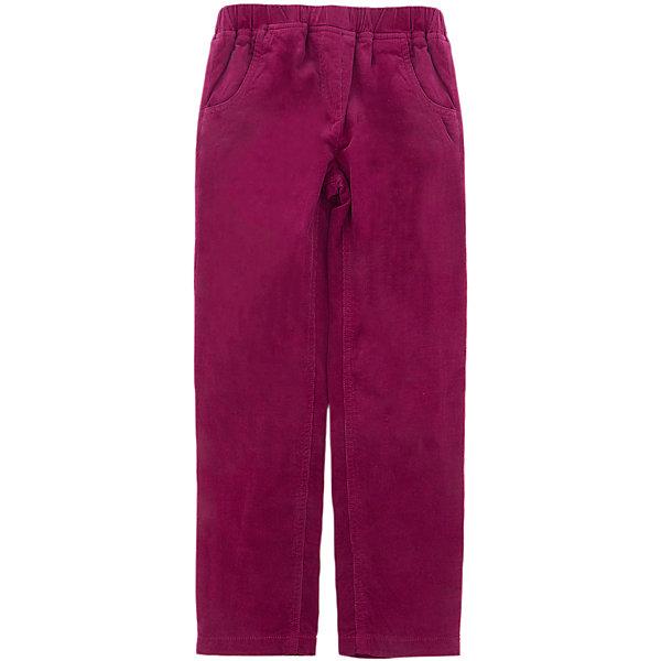 Брюки SELA для девочкиБрюки<br>Характеристики товара:<br><br>• цвет: красный<br>• состав ткани: 98% хлопок, 2% эластан<br>• сезон: демисезон<br>• застежка: пуговица<br>• шлевки<br>• страна бренда: Россия<br>• страна производства: Бангладеш<br><br>Красные брюки для девочки от Sela - стильная молодежная вещь по доступной цене. Модные брюки для девочки помогут разнообразить гардероб ребенка. Брюки для ребенка сшиты из качественного материала, в составе которого преимущественно натуральный хлопок. <br><br>Брюки Sela (Села) для девочки можно купить в нашем интернет- магазине.<br>Ширина мм: 215; Глубина мм: 88; Высота мм: 191; Вес г: 336; Цвет: красный; Возраст от месяцев: 18; Возраст до месяцев: 24; Пол: Женский; Возраст: Детский; Размер: 92,116,110,104,98; SKU: 7229731;