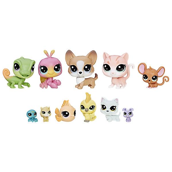 Купить Набор фигурок Littlest Pet Shop Домашние петы, 11 шт., Hasbro, Китай, Женский