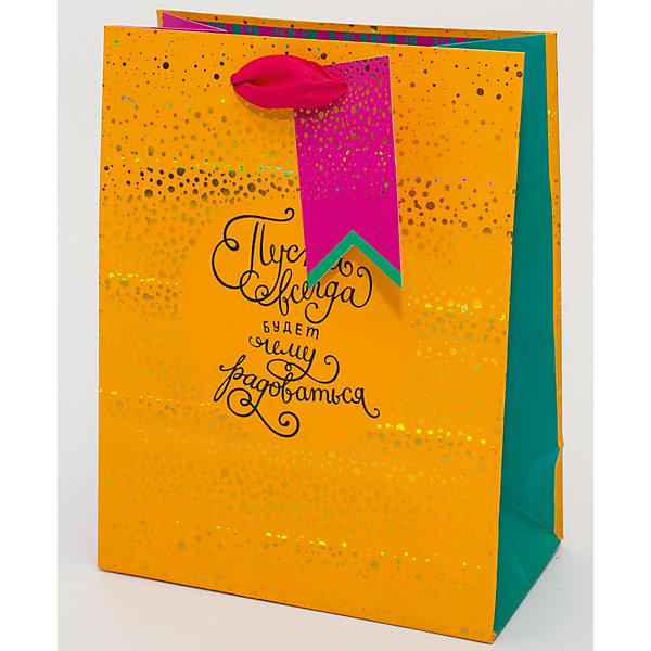 Пакет премиум ВСpr размер 178х230Детские подарочные пакеты<br>Пакет подарочный премиальный, размер 178х230х98мм. Пакет выполнен из плотной бумаги с матовой ламинацией, с ленточными ручками и деталями из фольги. Такой роскошный пакет всегда будет приятными дополнением к любому подарку.<br>Ширина мм: 178; Глубина мм: 230; Высота мм: 3; Вес г: 42; Возраст от месяцев: 36; Возраст до месяцев: 2147483647; Пол: Унисекс; Возраст: Детский; SKU: 7246348;