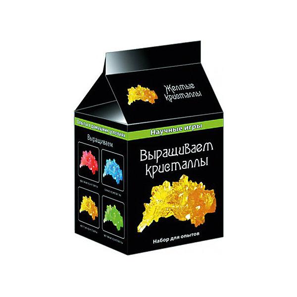 Научные игры «Выращиваем кристаллы»Выращивание кристаллов<br>Характеристики товара:<br><br>• возраст: от 8 лет;<br>• цвет кристалла: желтый;<br>• материал:  пластик, шерсть, бумага;<br>• размер упаковки: 10х8х8 см.;<br>• упаковка: картонная коробка;<br>• вес в упаковке: 70 гр.;<br>• бренд, страна: Ranok Creative, Украина.<br><br>Набор для опытов «Выращиваем кристаллы» от бренда Ranok Creative позволит вашему ребенку самостоятельно провести эксперимент по выращиванию цветного кристалла. <br><br>В наборе есть все необходимое - тара, мешатели, салфетки, грунт и, конечно, окрашенное вещество для создания насыщенного раствора. <br><br>Такой набор способствует расширению кругозора детей, развитию интереса к науке и природным явлениям, а также отлично отвлекают от телевизора и интернета!<br><br>Рекомендуемый возраст: от 8 лет, под наблюдением взрослых.<br><br>Набор для опытов «Выращиваем кристаллы», цвет - желтый, Ranok Creative можно купить в нашем интернет-магазине.<br><br>Ширина мм: 80<br>Глубина мм: 80<br>Высота мм: 100<br>Вес г: 70<br>Возраст от месяцев: 96<br>Возраст до месяцев: 192<br>Пол: Унисекс<br>Возраст: Детский<br>SKU: 7252939